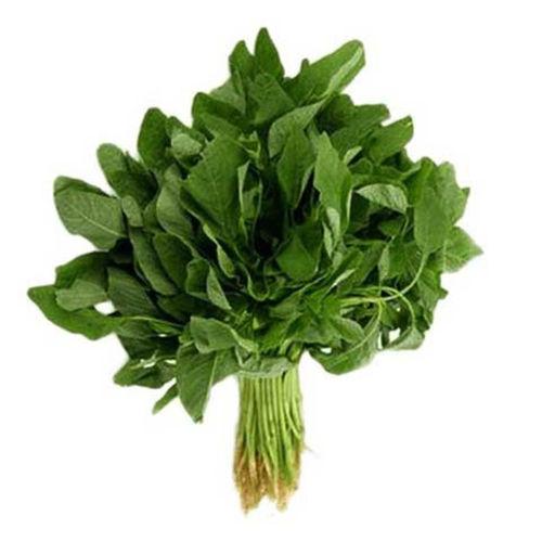 Buy Green Cheera Online